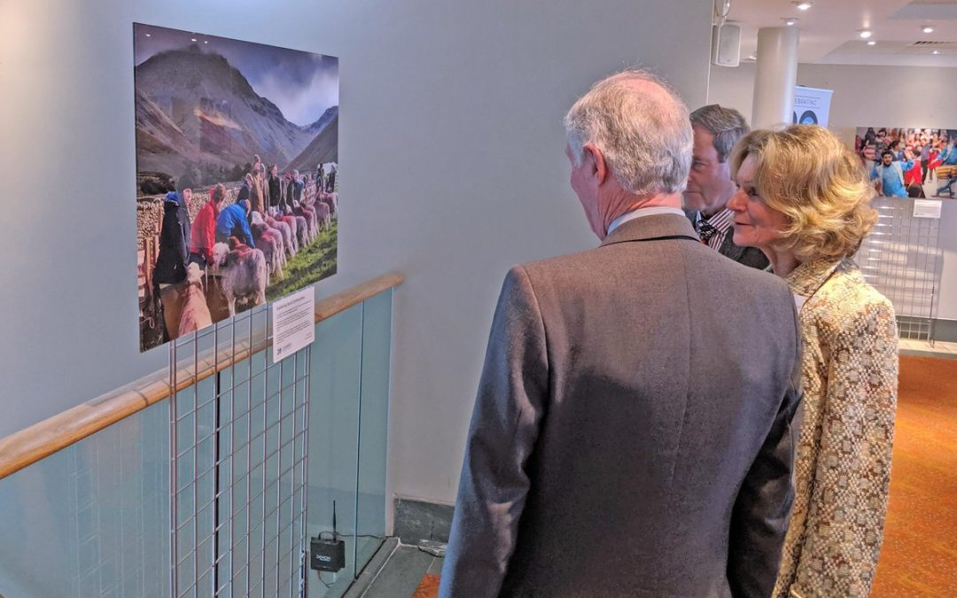 CHARITY CELEBRATES 20 YEARS OF GIVING WITH EXHIBITION & BOOK